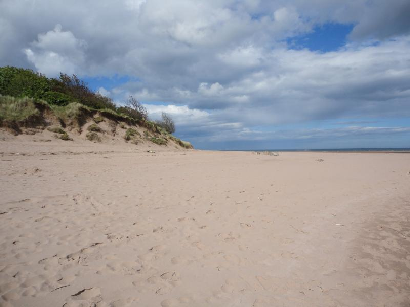Seaside Rendezvous, holiday rental in Angus
