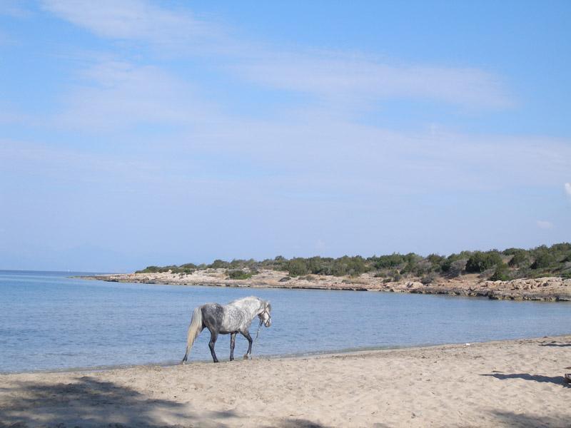 Sandy beach in Kilada village