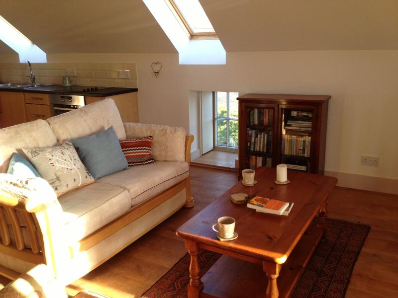 The sitting area, with well stocked bookcase.