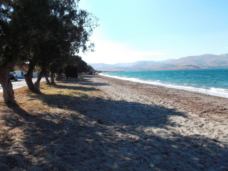 Nyfida Beach, walking/biking distance from the house with blue flag, changing/showering and taverna.