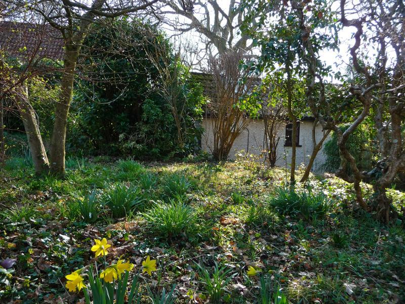 Blick auf die Hütte im März