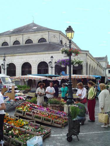 Market Day St. Jean D'Angely