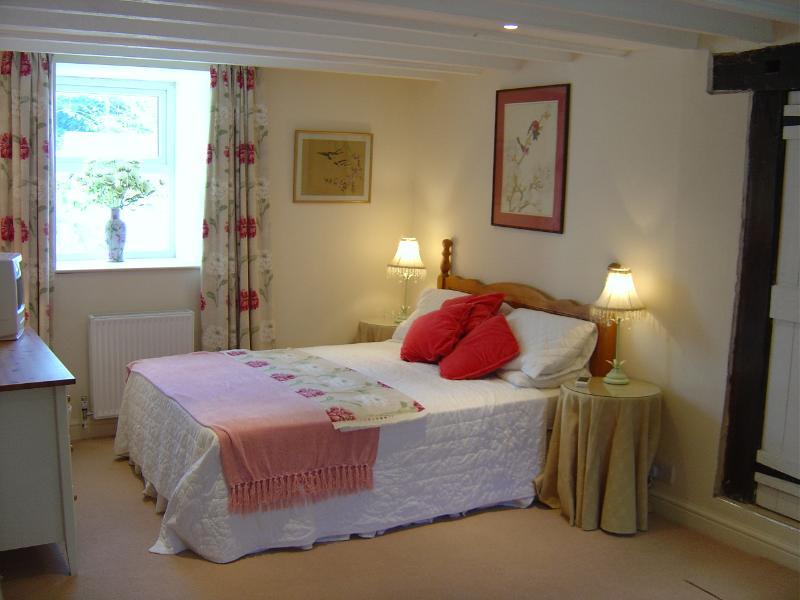 Cosy ,spacious bedroom en suite - comfy mattress. Downstairs.