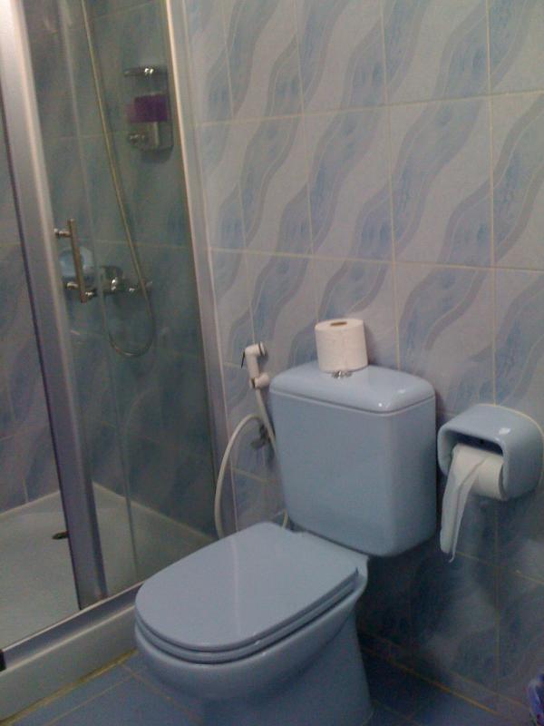 Blå rummet badrum