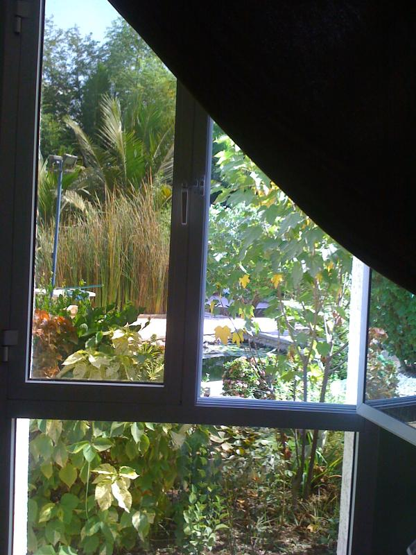 Visa trädgården från en av roomz