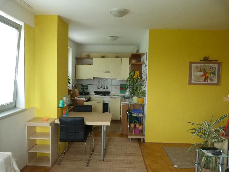 Apartment Aussie, holiday rental in Ljubljana