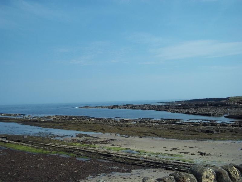 Rocce off Road Harbour, Beadnell - grande per il rock pool