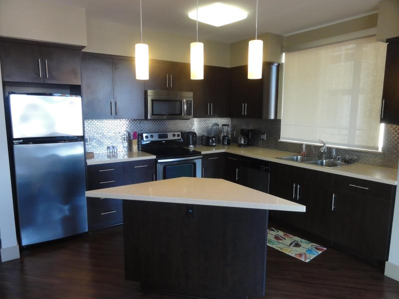 Modern Kitchen with appliances you can use