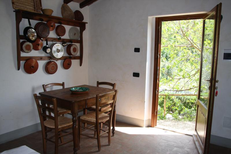 Salvia's diningroom....in the middle of the vine yard !!!