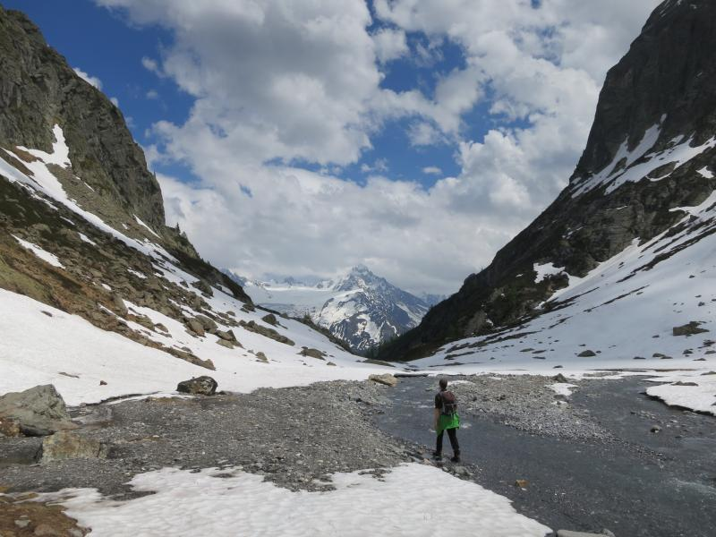 Early Summer walking in the Chamonix Valley