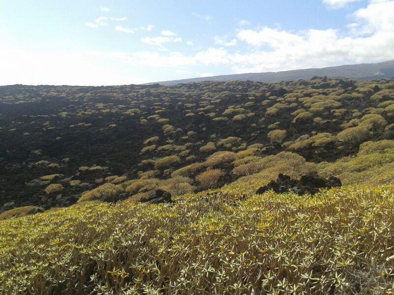 """Vista dalla riserva naturale speciale del """"el malpaís de Güímar"""""""