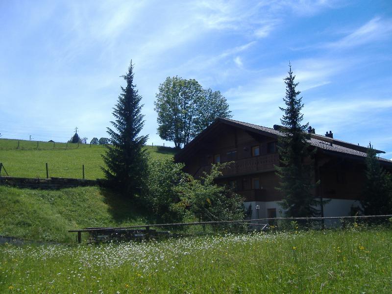 Chalet in Summer