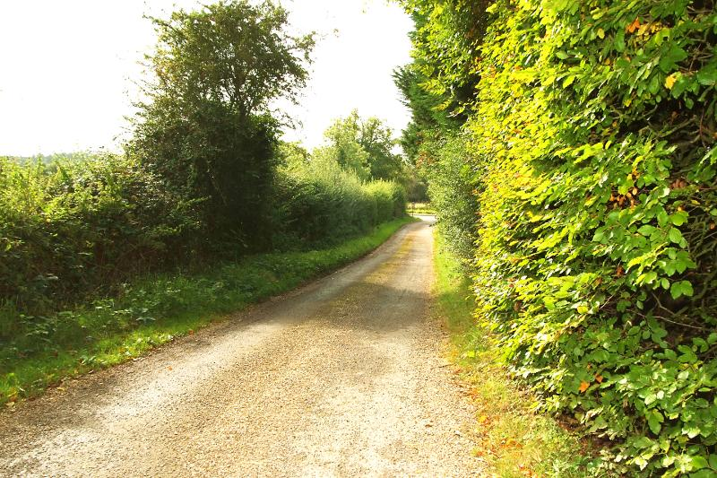 Lane de Salter, entrada a Rigside