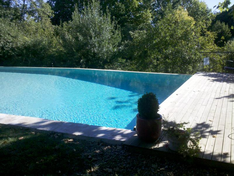 Our heated and fenced pool with infinity edge