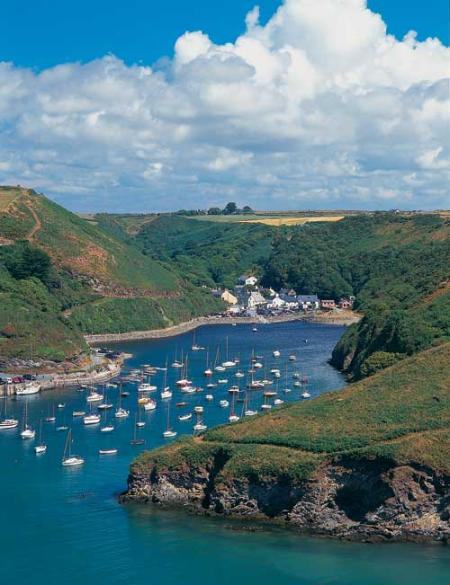 Solva Harbour tide in - 5 minutes from 'The Annexe'