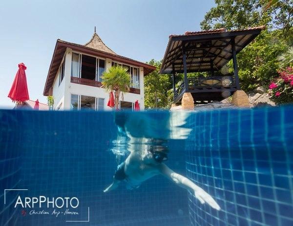Villa Lotus and Pool area