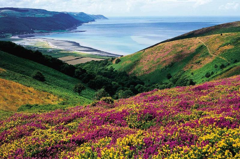 Porlock Bay - Exmoor