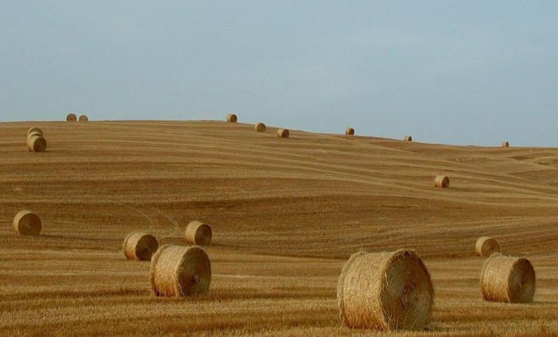 la campagna Toscana