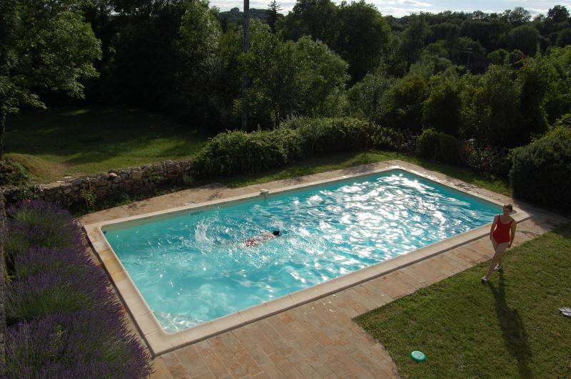An evening swim viewed from the sitting room window