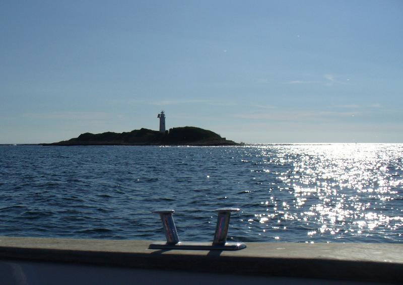 Licosa island, marine reserve