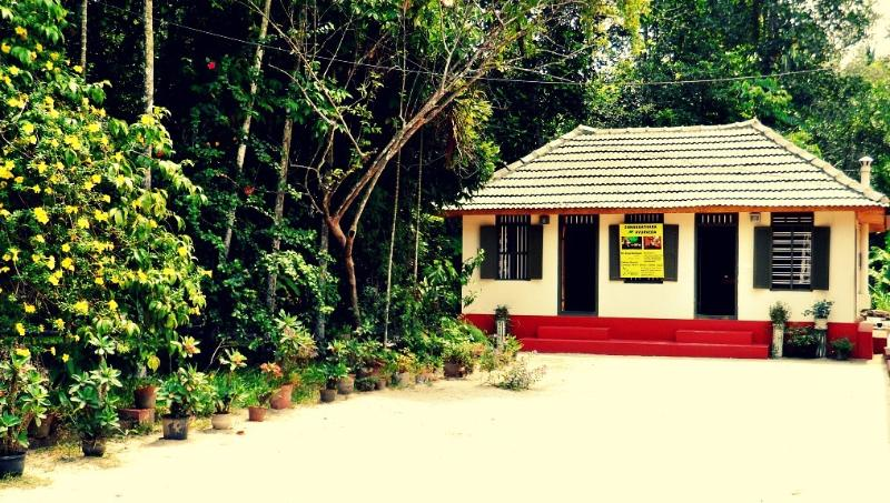 The Ayurveda Centre - Outside