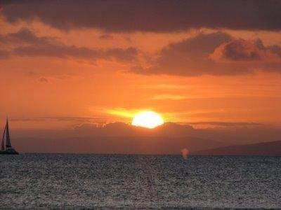 A beautiful Sunset --see the whale spouting? Photo was taken from our lanai.