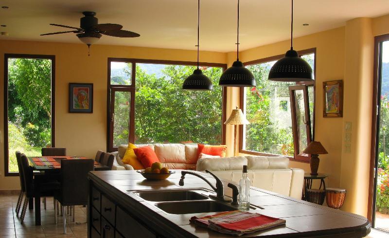 Cocina de diseño abierto y sala de estar
