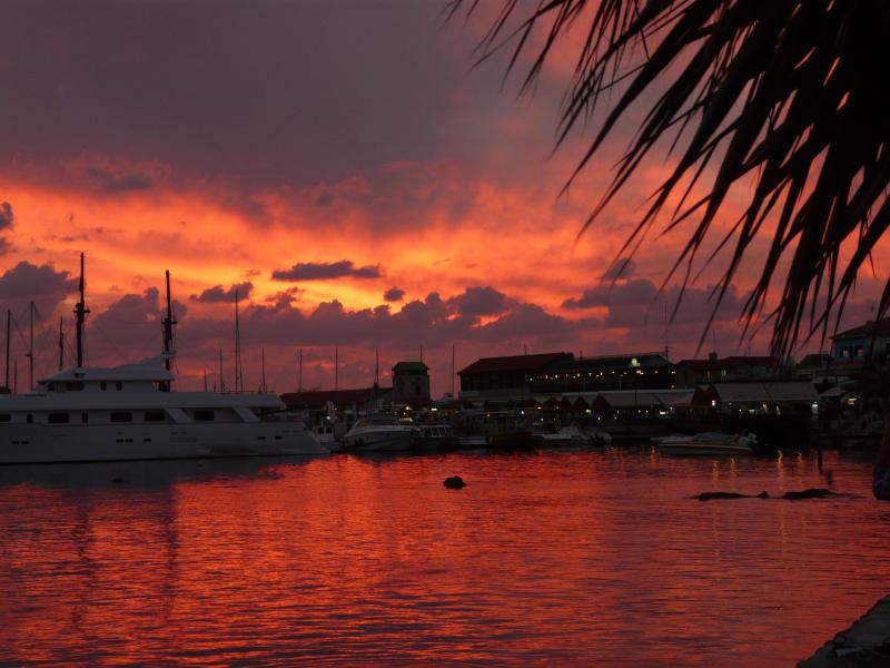 Paphos harbour at sunset.