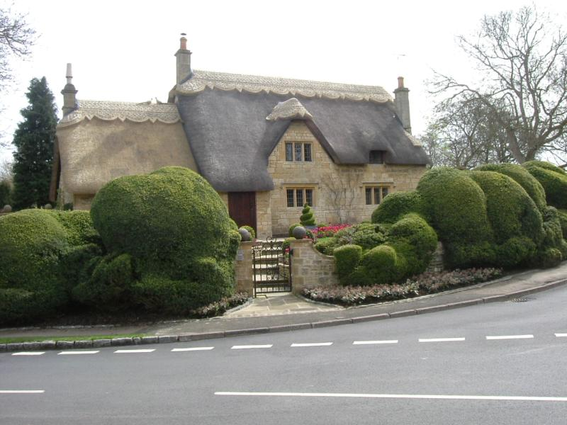Thatched cottage in the town