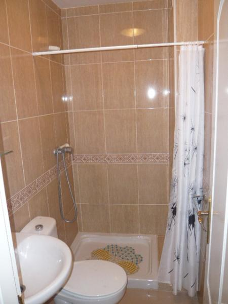 Shower Room, wash hand  basin and toilet