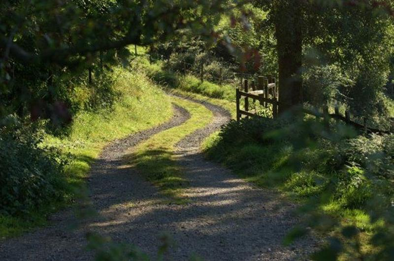 The track to Jackdaw cottage
