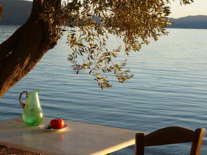 Elaionas Nikou, location de vacances à Dikili