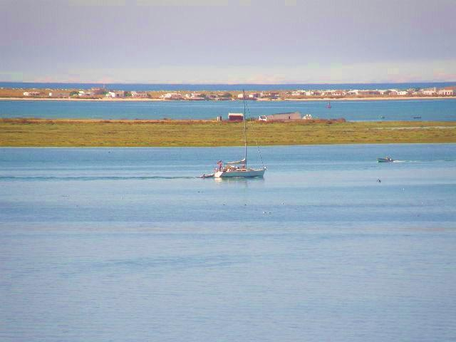 View of the sea and ria formosa conservation wildlife area