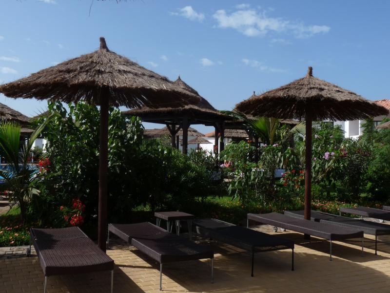 Adequate sunbeds & shaded areas