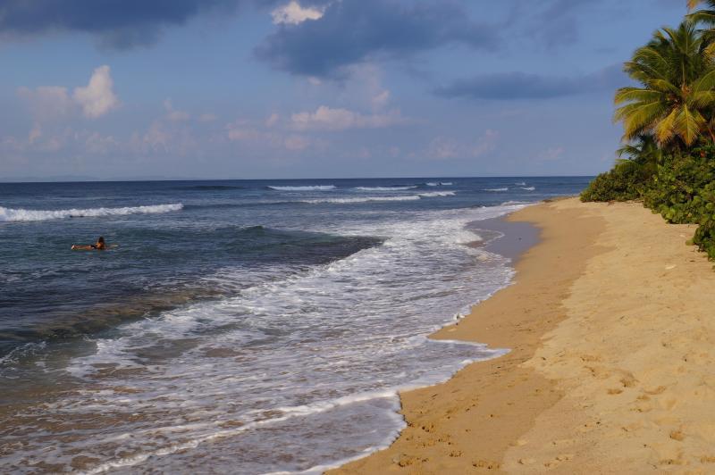 Morning walks at the beach.