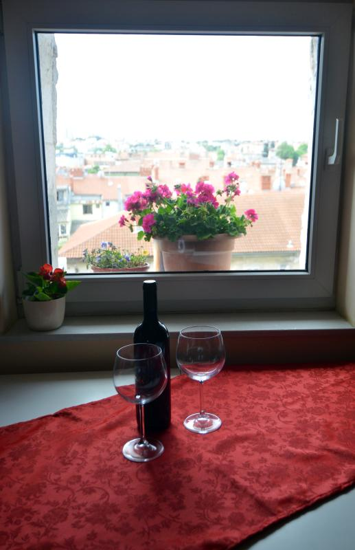 Glace of good croatian wine with a city view... priceless!
