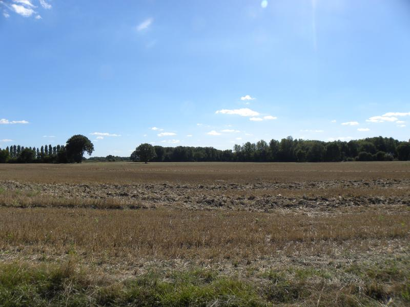 The rural view from the garden looking south over the Loire