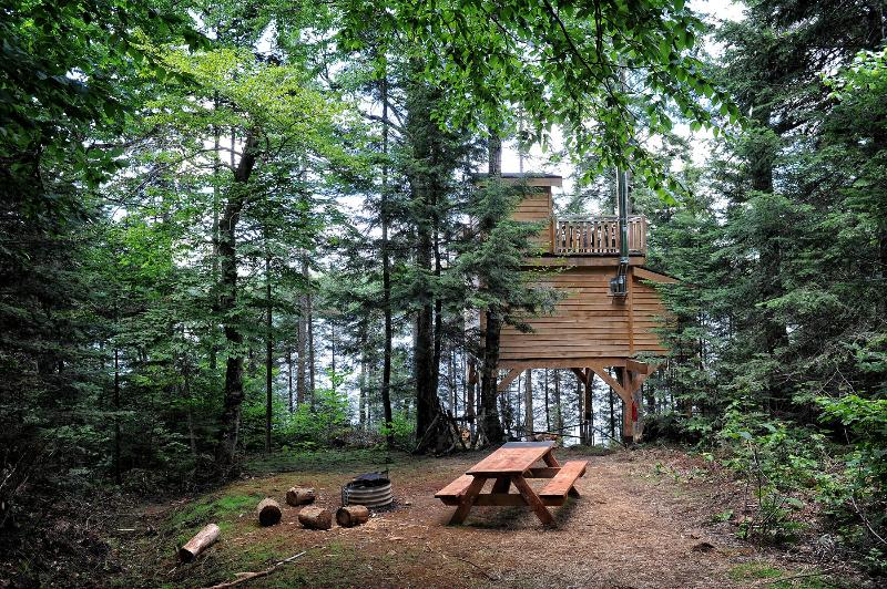 typical treehouse site