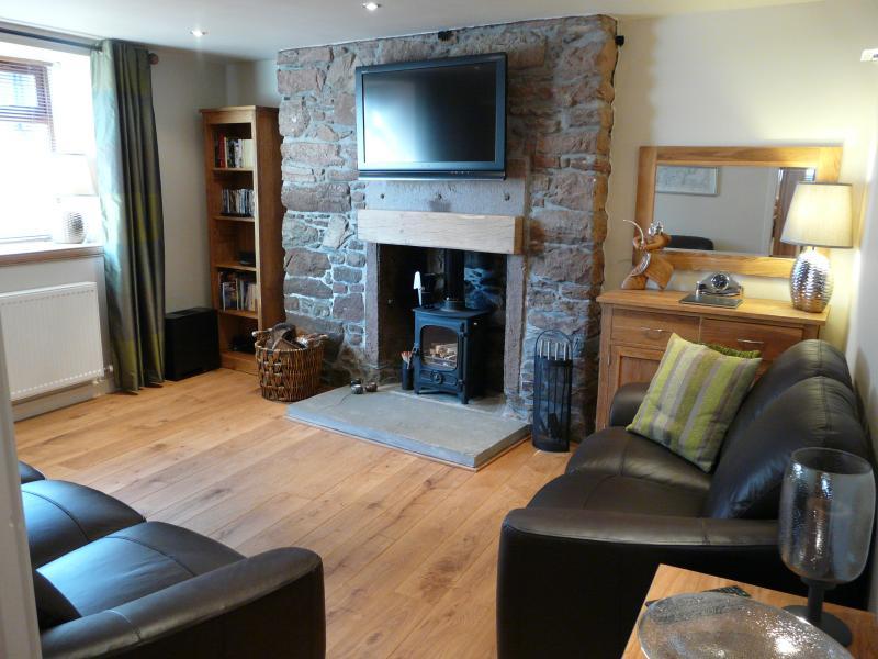 Wohnzimmer mit Holzofen Ofen
