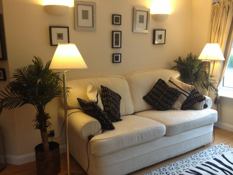 Large comfortable sitting area with flat screen tv freeview, DVD/CD player, Bose sound dock system