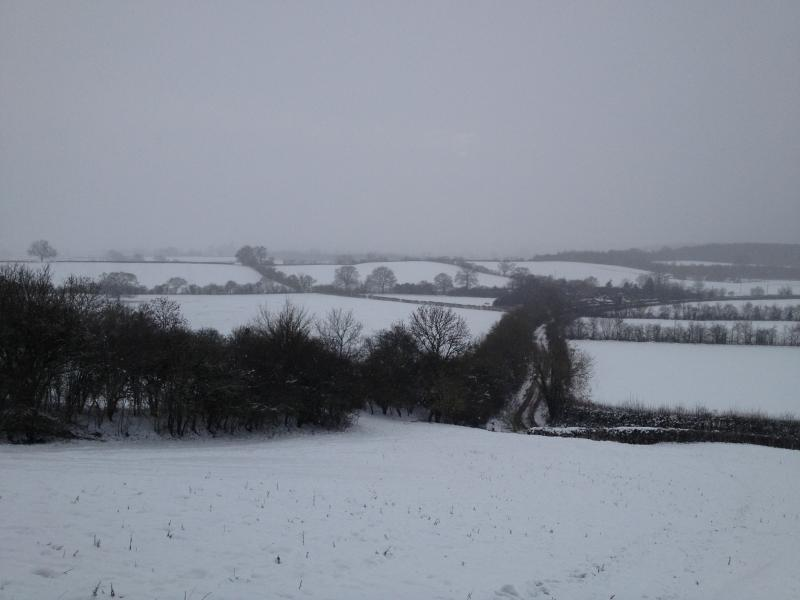 Winter wonderland ! And we have some good slopes for sledging enthusiasts ! Oh and the sledges!