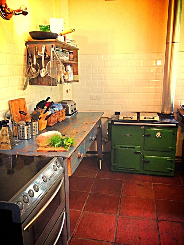 Our well equipped kitchen comes with a Rayburn and double electric oven and dishwasher