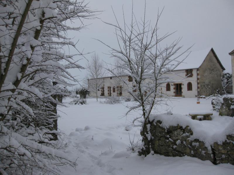 Les Petites Cigognes in the snow
