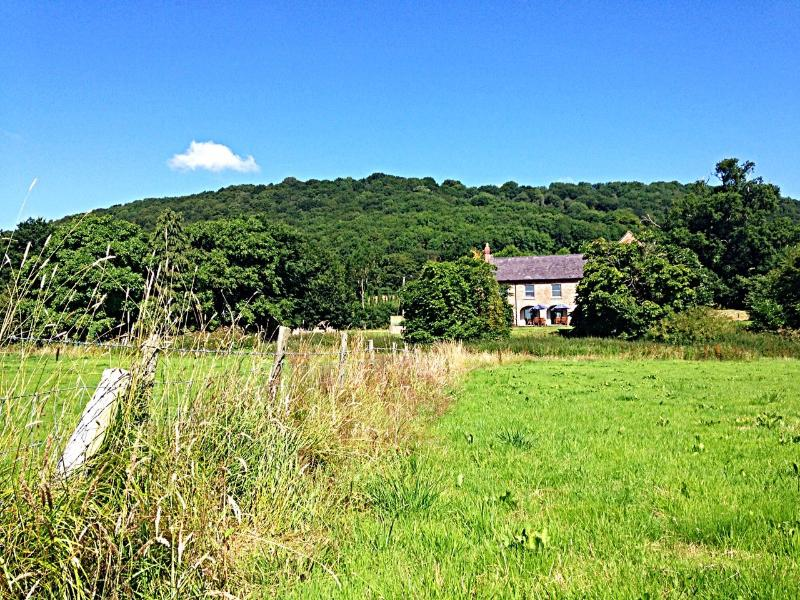 View from across our hay meadows to Gaer Hall with Gaer Fawr behind.