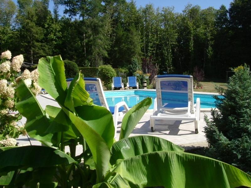 10m x 5.5 m swimming pool