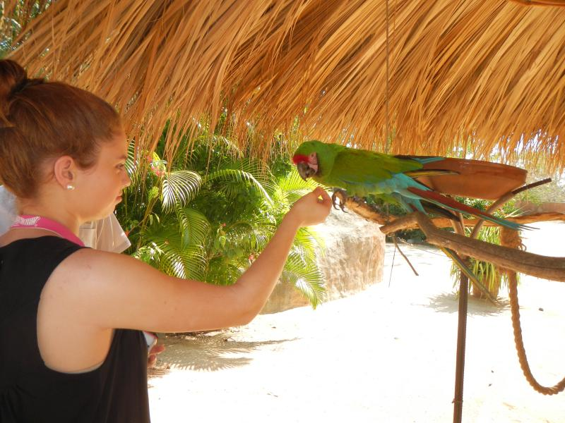 Young guest with parrot at El Refugio
