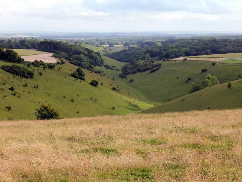 The Cranborne Chase, an Area of Outstanding Natural Beauty