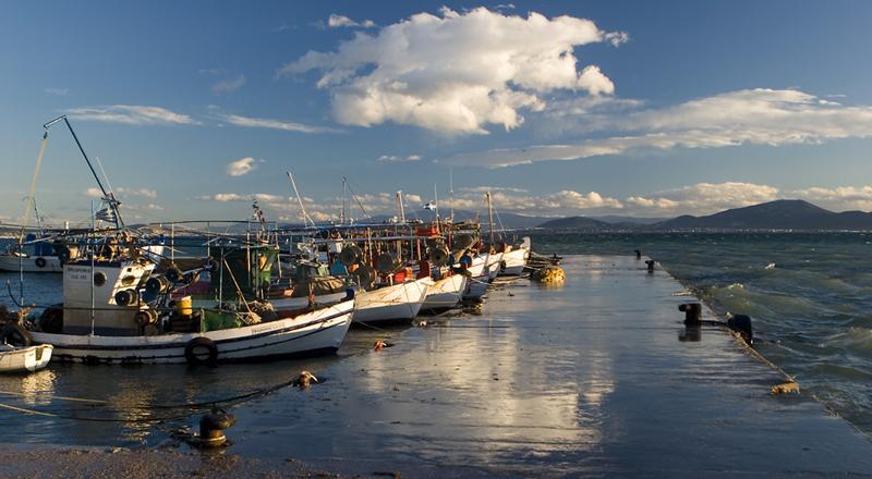 Politika fishing port
