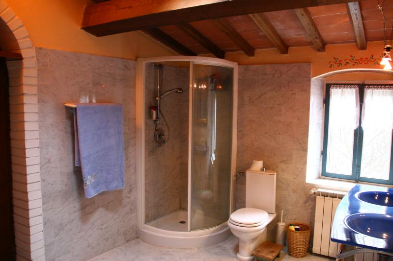 Apartment: en-suite bathroom, view on shower