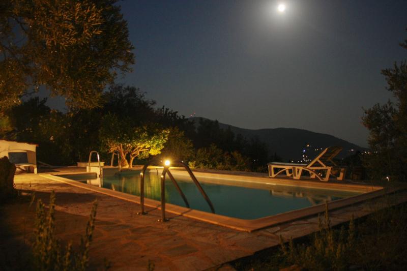Night swim in the pool under August's full moon!